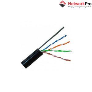 Cable Mạng UTP DINTEK CAT.5e (1101-03011A) Chính Hãng tại NetworkPro