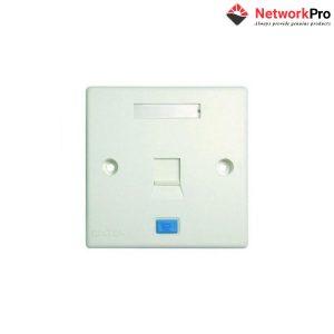Mặt nạ 1 port Dintek (APF-01) - NetworkPro